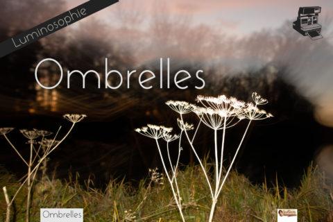 Ombrelles de Julien Robert, photographe de Châlons-en-Champagne. 2020