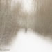 lost in the snow, julien robert photographe châlons-en-champagne